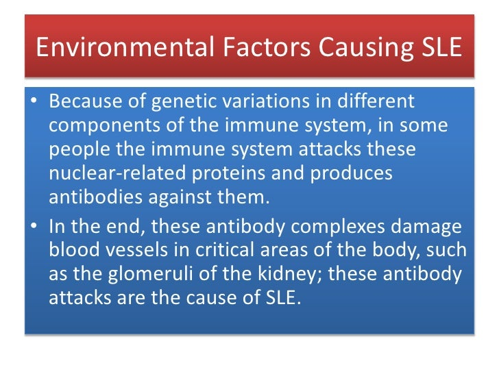 Environmental Factors Causing SLE<br />Because of genetic variations in different components of the immune system, in some...