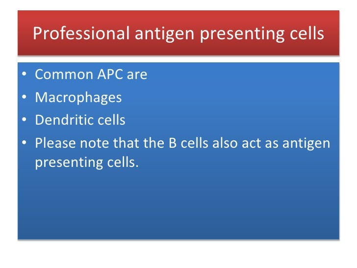 Professional antigen presenting cells <br />Common APC are<br />Macrophages<br />Dendritic cells<br />Please note that the...