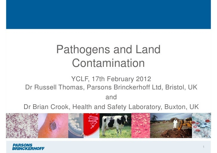 Pathogens and Land             Contamination               YCLF, 17th February 2012Dr Russell Thomas, Parsons Brinckerhoff...