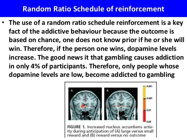 Reinforcement schedule for gambling cash casino money
