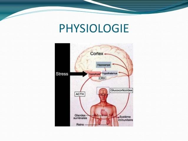 Pathologies des glandes surrenales
