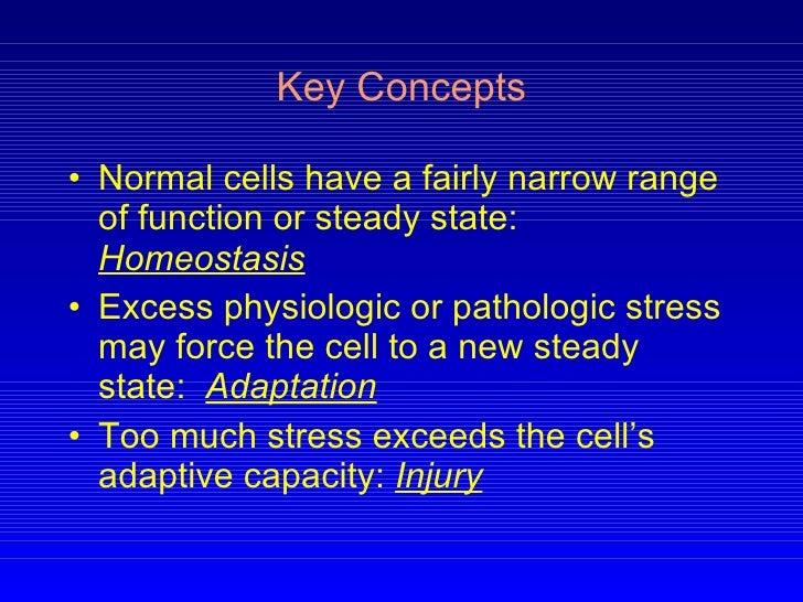 Pathology cell injury i