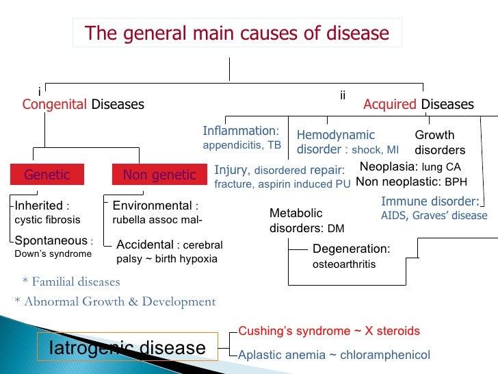 essay graves disease