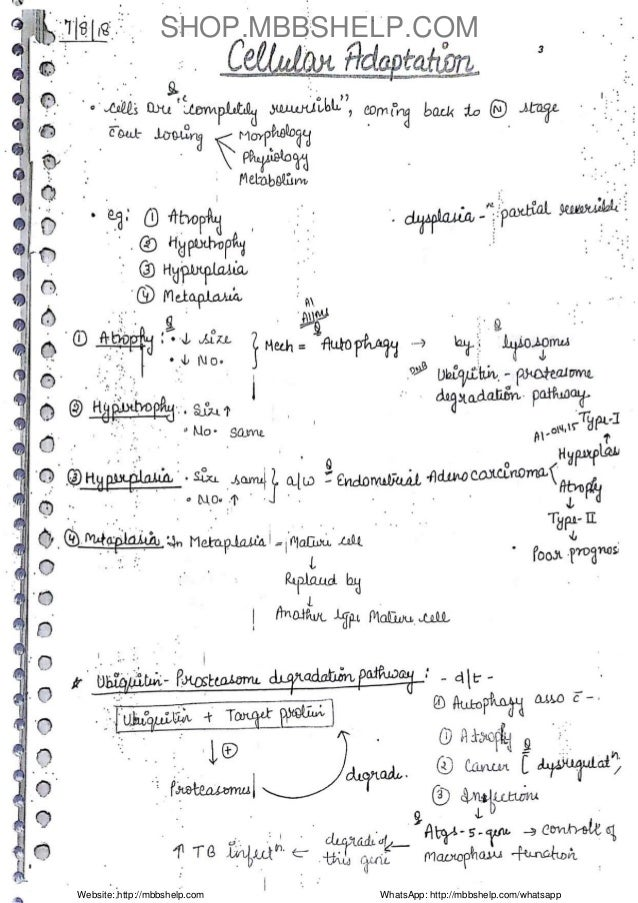 Pathology Handwritten Note Sample Slide 3
