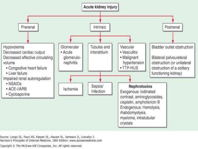 Pathophysiology of acute kidney injury etiologic classification of aki acute kidney injury pre renal intrinsic post renal glomerular interstitial vasculartubular 10 ccuart Gallery
