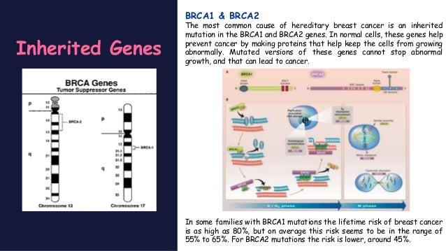 pathophysiology of breast cancer pdf