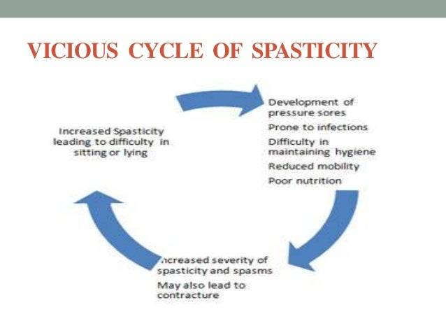 pathophysiology of spasticity, Skeleton