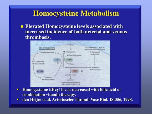 Homocysteine Metabolism   Elevated Homocysteine levels associated with increased incidence of both arterial and venous th...