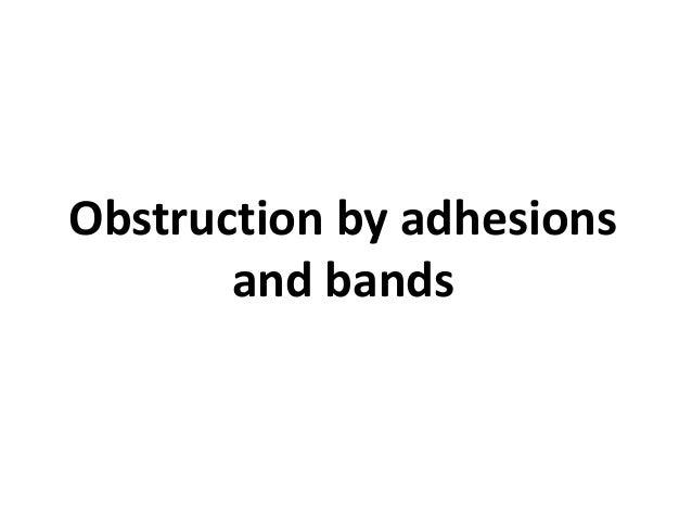 pathopyshiology of intestinal obstruction chirantan mandal