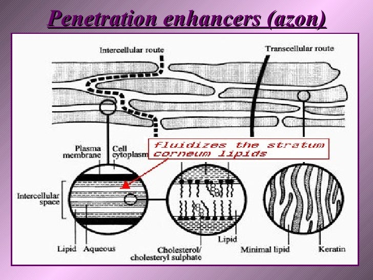 girl-chemistry-skin-cosmetic-absorb-penetration-enhancer