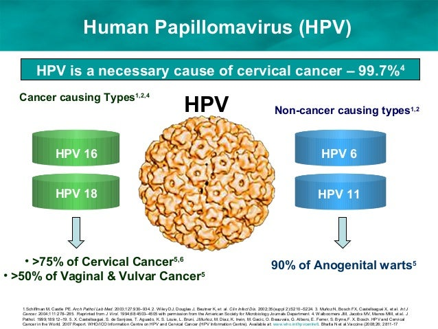 Cervical Cancer Significance Of Hpv 16 18: Dsa By Maya Sunil