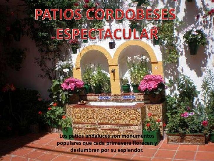 Patios cordobeses - Patios interiores andaluces ...