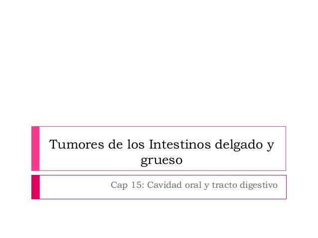 Tumores de los Intestinos delgado y grueso Cap 15: Cavidad oral y tracto digestivo