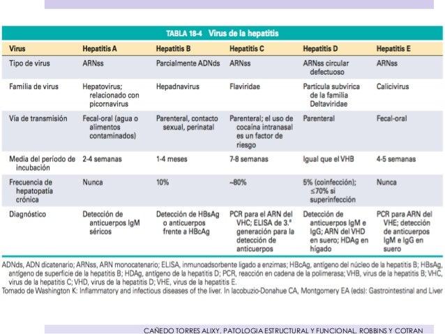 Patologia Estructural Y Funcional De Robbins Pdf