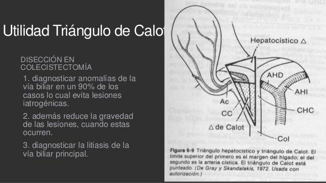 Patología biliar benigna + CPRE + Drenaje percutaneo