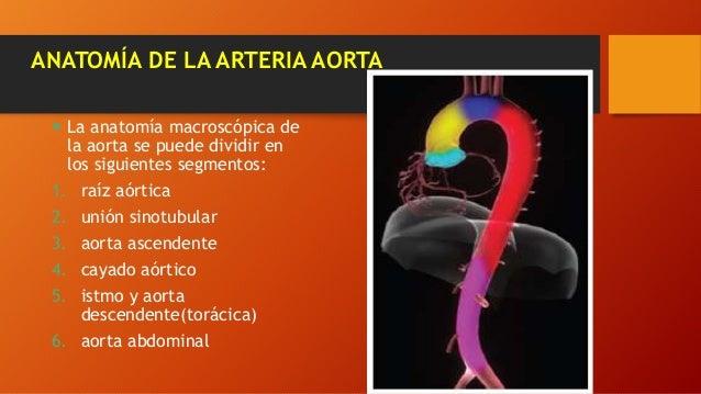 Patologías adquiridas de la aorta Diagnóstico Imagenológico