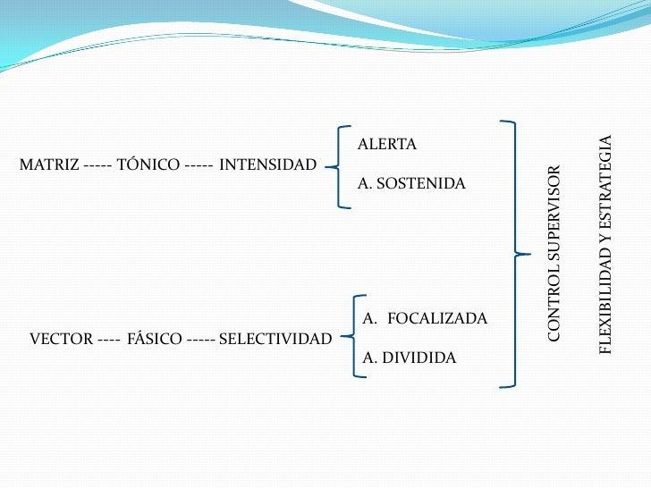 Patologías de la atención  Slide 2