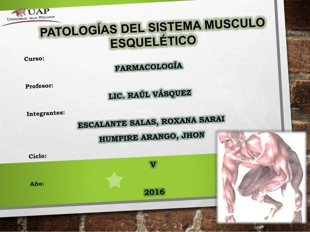 ENFERMEDADES DEL SISTEMA MUSCULO ESQUELÉTICO • Reconocer las principales patologías del sistema musculo esquelético • Reco...