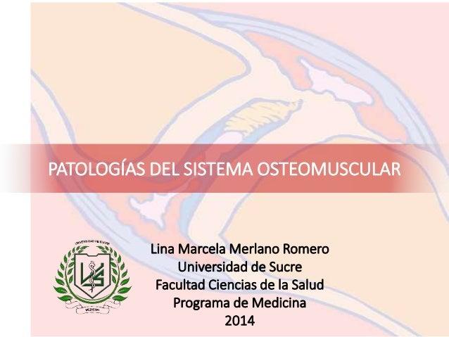 PATOLOGÍAS DEL SISTEMA OSTEOMUSCULAR Lina Marcela Merlano Romero Universidad de Sucre Facultad Ciencias de la Salud Progra...