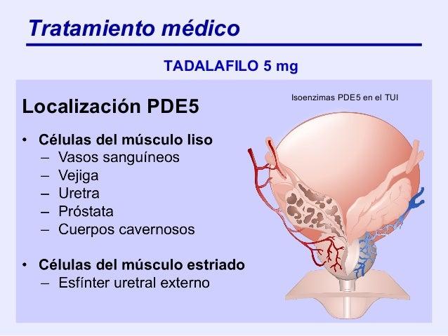 Patologias Urologicas Para Medicos De Atencion Primaria