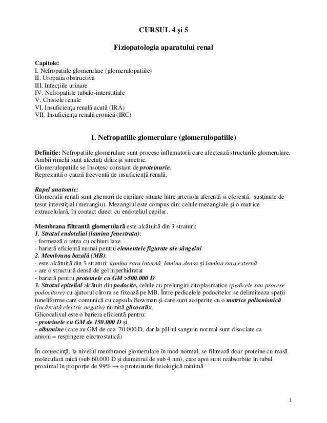 1 CURSUL 4 i 5 Fiziopatologia aparatului renal Capitole: I. Nefropatiile glomerulare (glomerulopatiile) II. Uropatia obstr...