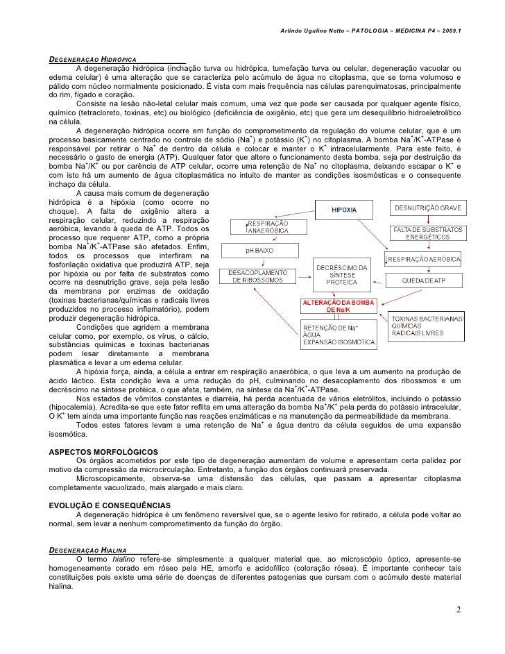 Patologia 08   degenerações - med resumos - arlindo netto Slide 2