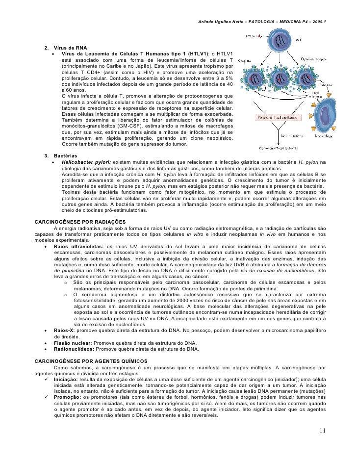 Arlindo Ugulino Netto – PATOLOGIA – MEDICINA P4 – 2009.1    2.    Vírus de RNA         • Vírus da Leucemia de Células T Hu...