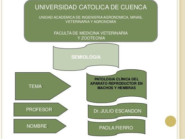 UNIVERSIDAD CATOLICA DE CUENCA    UNIDAD ACADEMICA DE INGENIERIA AGRONOMICA, MINAS,                VETERINARIA Y AGRONOMIA...