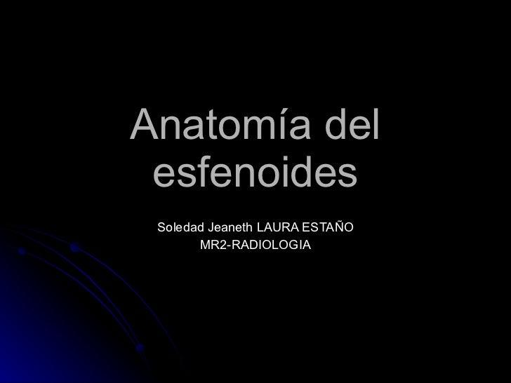 Anatomía del esfenoides Soledad Jeaneth LAURA ESTAÑO MR2-RADIOLOGIA