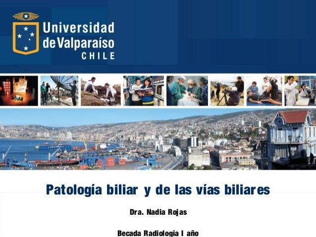 Patología biliar y de las vías biliares Dra. Nadia Rojas Becada Radiología I año