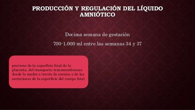 PRODUCCIÓN Y REGULACIÓN DEL LÍQUIDO AMNIÓTICO Decima semana de gestación 700-1.000 ml entre las semanas 34 y 37 proviene d...