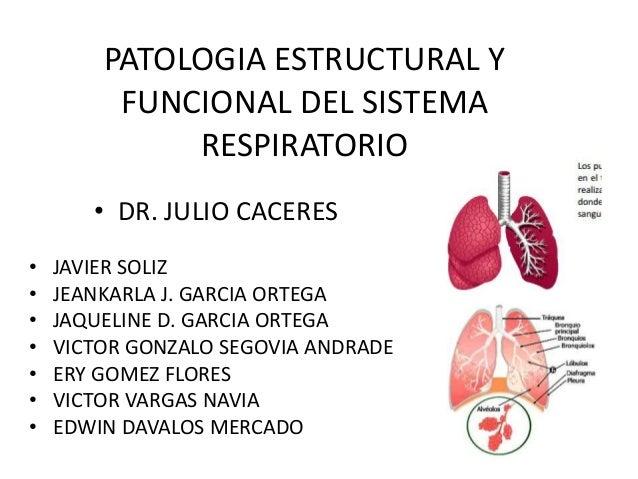 PATOLOGIA ESTRUCTURAL Y FUNCIONAL DEL SISTEMA RESPIRATORIO • DR. JULIO CACERES • • • • • • •  JAVIER SOLIZ JEANKARLA J. GA...