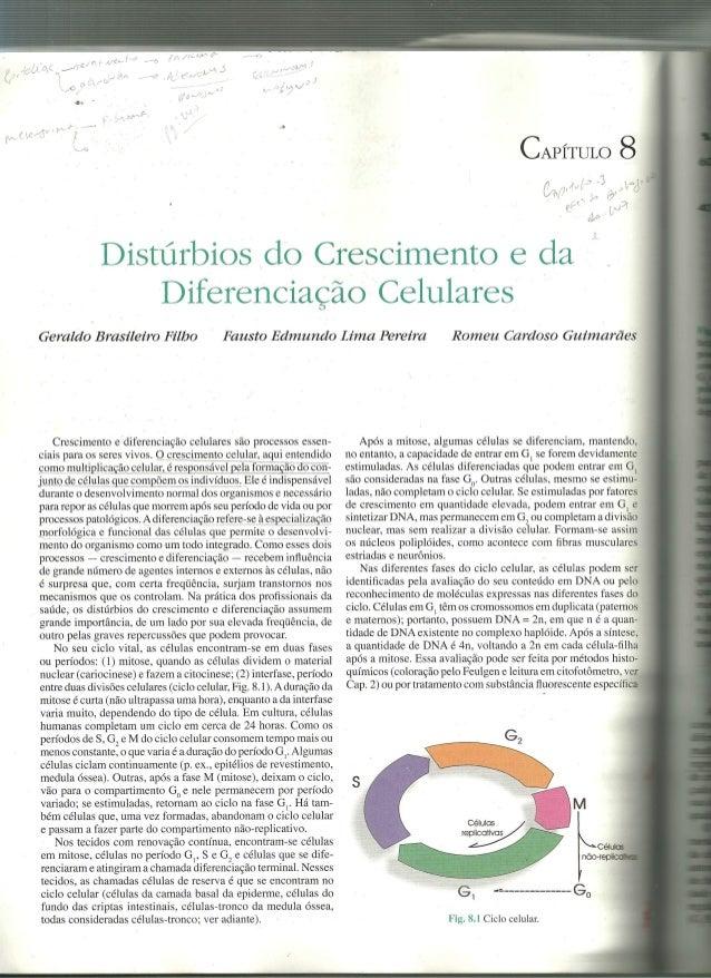 displasias cânceres cacinogênese