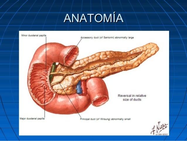 Patologia quirurgica del pancreas (3)
