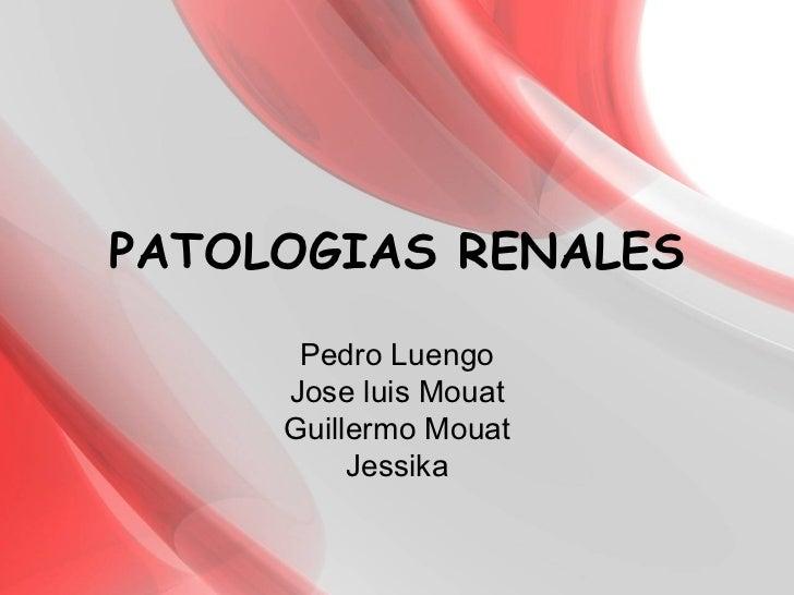 PATOLOGIAS RENALES Pedro Luengo Jose luis Mouat Guillermo Mouat Jessika