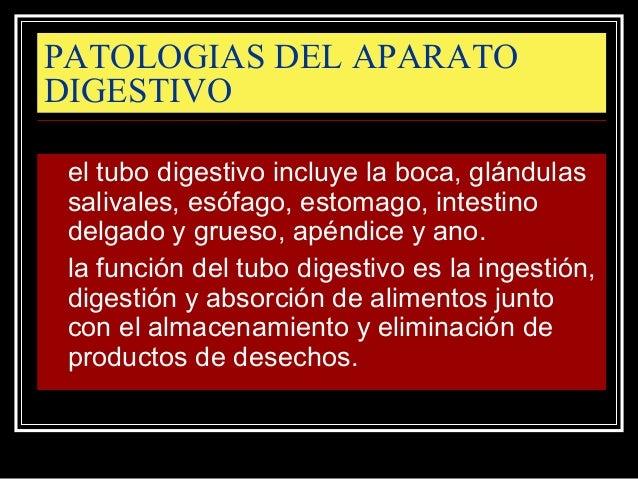 Patologias del aparato digestivo 1 Slide 2