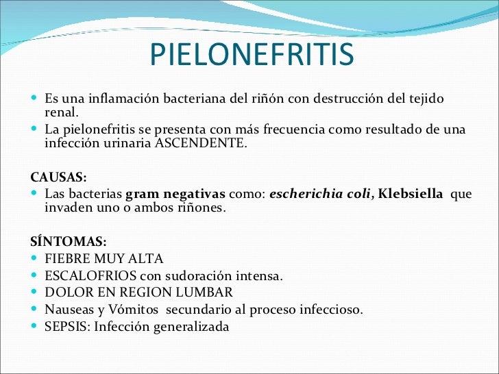 PIELONEFRITIS <ul><li>Es una inflamación bacteriana del riñón con destrucción del tejido renal. </li></ul><ul><li>La pielo...