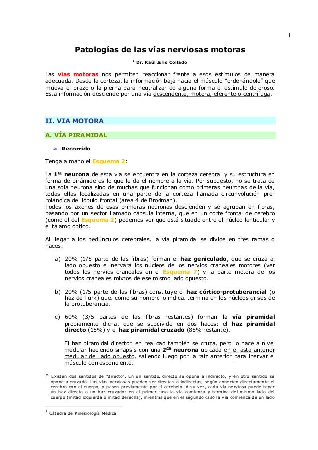 Patologias de las_vias_nerviosas_motoras