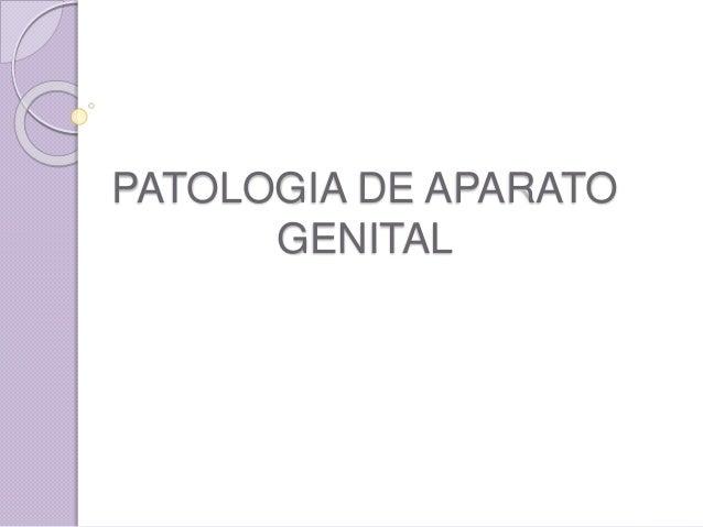 PATOLOGIA DE APARATO  GENITAL