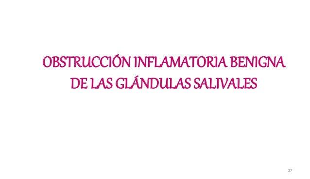 OBSTRUCCIÓN INFLAMATORIA BENIGNA DE LAS GLÁNDULAS SALIVALES 27