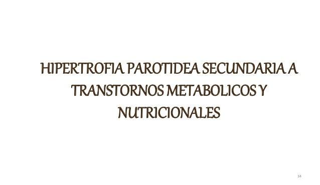 HIPERTROFIA PAROTIDEA SECUNDARIA A TRANSTORNOS METABOLICOS Y NUTRICIONALES 34