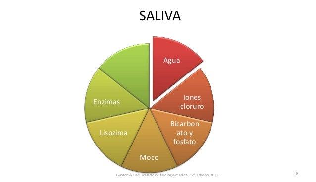 SALIVA Agua Iones cloruro Bicarbon ato y fosfato Moco Lisozima Enzimas Guyton & Hall. Tratado de fisiologia medica. 12° Ed...