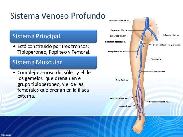 Patologias venosas perifericas