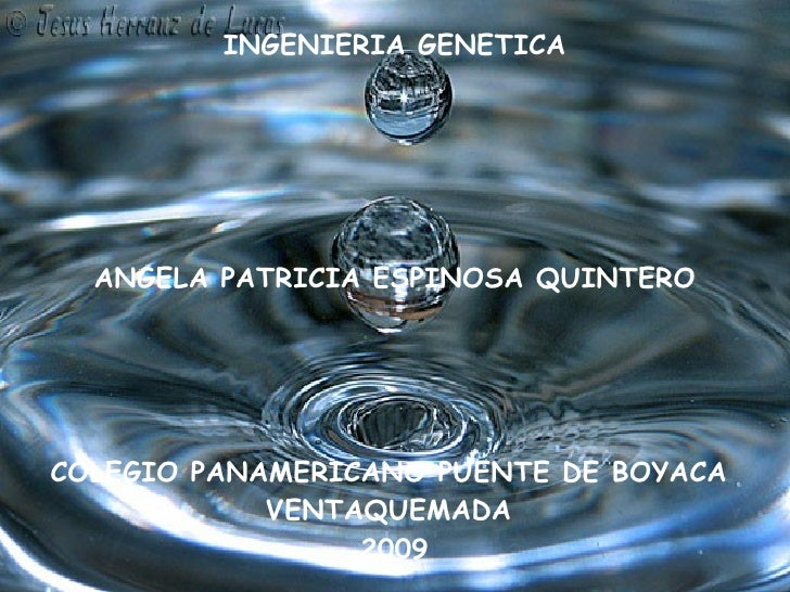 INGENIERIA GENETICA ANGELA PATRICIA ESPINOSA QUINTERO COLEGIO PANAMERICANO PUENTE DE BOYACA  VENTAQUEMADA  2009
