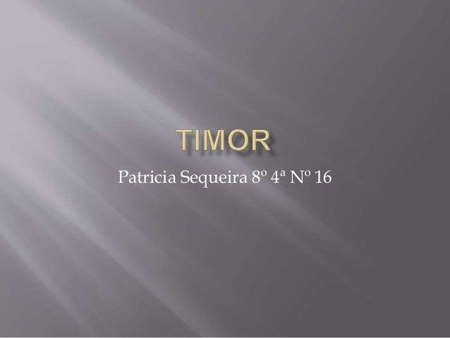 Patricia Sequeira 8º 4ª Nº 16
