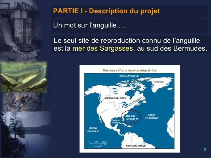Système d'aide à la décision géographique (SADG) pour la gestion des obstacles à la libre circulation de l'anguille Slide 2