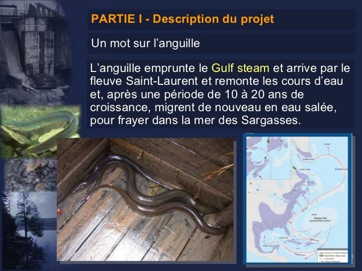 Système d'aide à la décision géographique (SADG) pour la gestion des obstacles à la libre circulation de l'anguille Slide 3