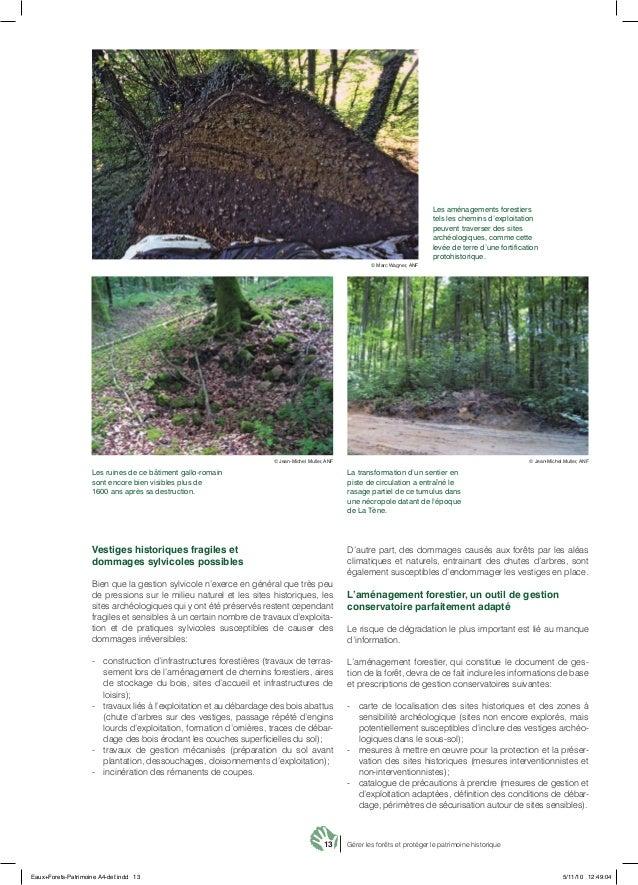 13 Gérer les forêts et protéger le patrimoine historique Vestiges historiques fragiles et dommages sylvicoles possibles Bi...