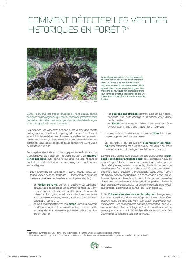 15 Introduction La forêt conserve des traces tangibles de notre passé, parfois des sites archéologiques qui sont à découvr...