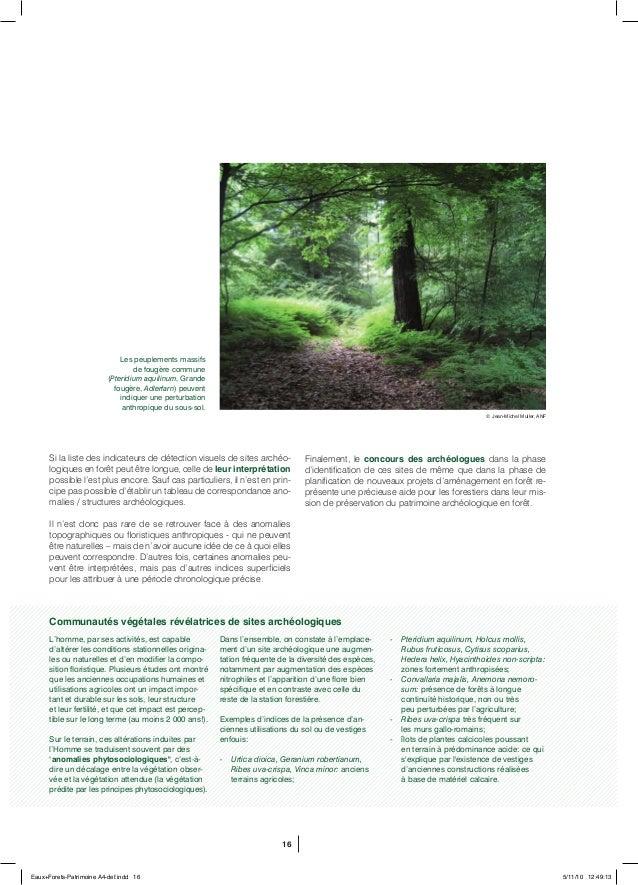 16 Si la liste des indicateurs de détection visuels de sites archéo- logiques en forêt peut être longue, celle de leur int...